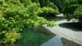나라현 · 요시노 22324700