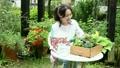 花を眺めている女性 22371307