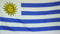 Slowmotion real textile Flag of Uruguay 22518631