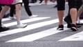 渋谷スクランブル交差点 フォローパン 流し撮り 初夏 人物 大勢 混雑 群衆 22943679