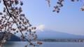 富士山と桜 23273133