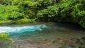川 清流 河川の動画 23320778