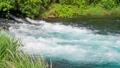 川 清流 河川の動画 23320779