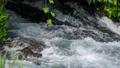 川 清流 河川の動画 23320787
