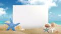 背景 ビーチ 浜辺の動画 23590557
