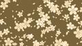 背景 桜 ループ 23647652