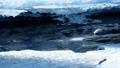 冬の流れ(アップ&フィックス) 23705280