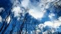 冬の空(フィックス) 23706798