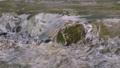 川 河川 清流の動画 23776126