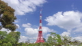 東京タワーと流れる雲と新緑の木立 ティルト 23894328