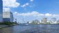 隅田川とスカイツリーと流れる雲 23894330