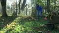 worker man in blue jacket rake fallen leaves and 23924382