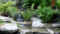 Small waterfall and pool with rocks and plants 24033919