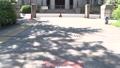 神奈川県庁(横浜市中区)外観 資料映像 24091993