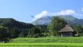 茅葺き小屋のある風景〜夏 タイムラプス動画 24104626