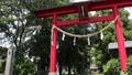 Ninomiya Akagi shr 24147598