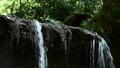 陰陽の滝 男滝 鎌倉 24467772
