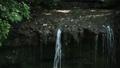 鎌倉 陰陽の滝 滝口 24467774