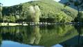 Shot of lake scenic in summer. Blurred nature 24524451