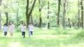 小学生 森林 走る 24626542