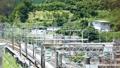 the, tokaido, shinkansen 24729737