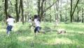 森林の中で追いかけっこ  24818383