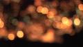 クリスマスツリー イルミネーションの光 パン 24968308