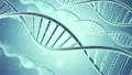 Rotating DNA, Genetic engineering scientific 25127923