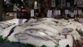 マーケット 魚 シーフードの動画 25153361