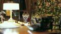 Retro Christmas interior with old typewriter 25566296