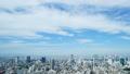 東京タイムラプス 東京都市ワイド全景 昼 俯瞰 地平線 渋谷 新宿 代官山 恵比寿 パン 25636710