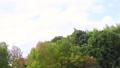 風景 自然 秋天 25744090