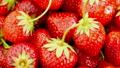 Fresh, Ripe, Juicy Strawberries Rotate.  25806526