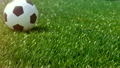 soccer ball movint to the center of camera view. 26156409