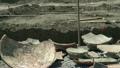 pottery, archeology, excavation 26159480