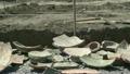 pottery, archeology, excavation 26159501