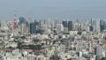 กลุ่มอาคารภูมิทัศน์ป่าโตเกียวโตเกียวทาวเวอร์ Hamamatsucho Shibaura Minato Ward รอบนอกเวลาผ่านพ้นไป 26203202