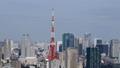 อาคาร Tokyo Landscape Forest อาคารโตเกียวทาวเวอร์ Toranomon Shimbashi Minato Ward Time Lapse Zoom Out 26203205