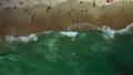 Laguna Beach Aerial Photography 05 California Coastline 26256466