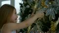クリスマス 樹木 樹の動画 26425516