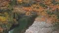 紅葉~秋川渓谷~(東京都-あきる野市) 26466396