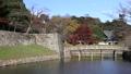 彦根城の濠 26482177