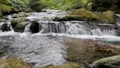 渓流 滝 川の動画 26560207