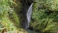 渓流 滝 川の動画 26560218