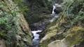 渓流 滝 川の動画 26560242