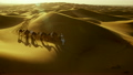 Aerial drone of a convoy of camels with owners across desert sand 26751781