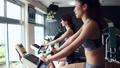 fitness, gym, gymnasium 26855714