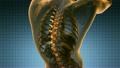 backbone. backache. science anatomy scan of human  26902394
