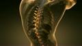 backbone. backache. science anatomy scan of human  26902395
