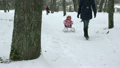 woman pull baby child on sledge through snow in 26990148